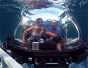 Ocean Pearl Submersible