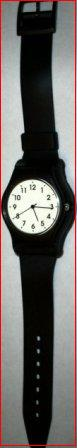 Fully Functional Wrist Watch and Panic Button
