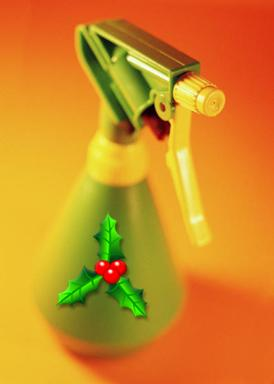 First Class Cleaning is offering a special Christmas Cleaning Package