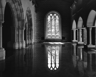 """Steve Arrison's """"Reflections in a restored 12th century Cistercian chapter"""" Vina"""