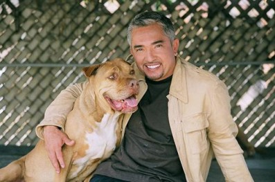 "Cesar Millan on ""Oh Behave"" with Arden Moore on PetLifeRadio.com"