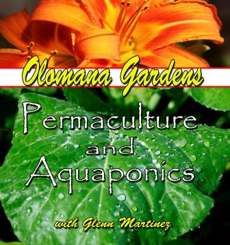 Permaculture and Aquaponics DVD at worldclassproductionz.com