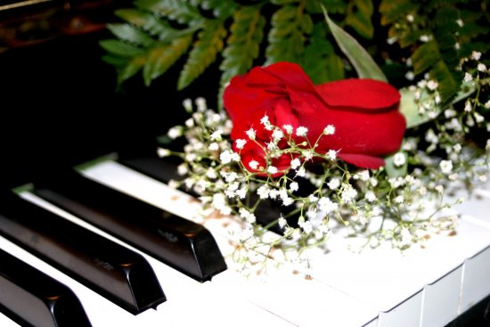 Valentine's Day Piano