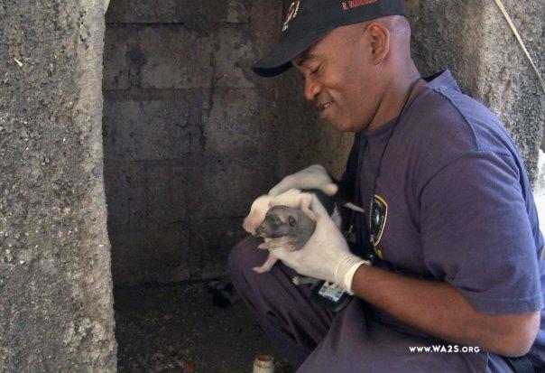 Feb 2, 2010 c. World Animal Awareness Society - www. WA2S.org