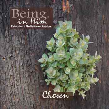 'Chosen' by Being in Him