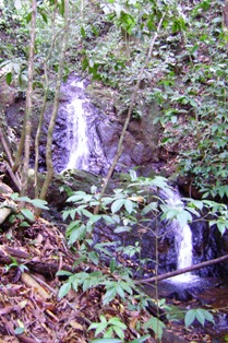 Just one of the waterfalls to be found in Nature Walk