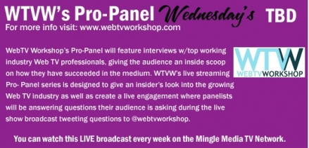 WebTV Workshop's Pro-Panel Interview Series on MMTVN