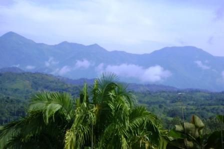 Views from NatureWalk