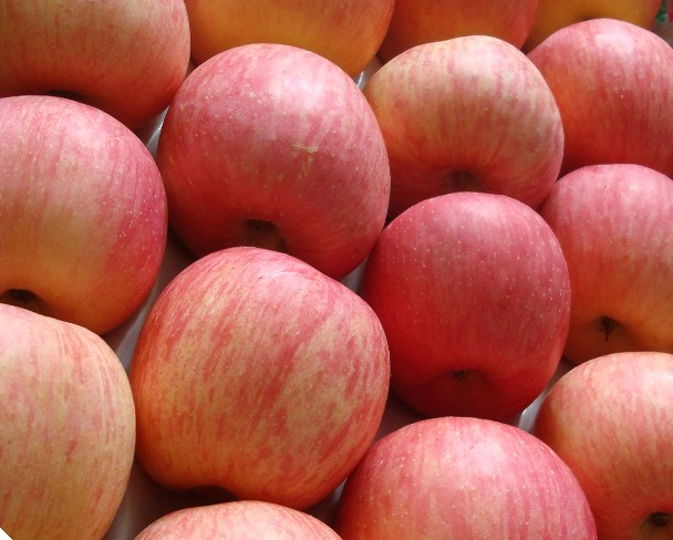 Fuji Apples Have A High Amount Of Flavonoids Dr Abhay