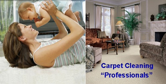How To Choose The Right Carpet Cleaner In San Antonio