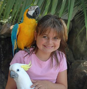 parrots and girl