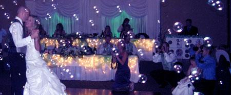 BEST OTTAWA WEDDING VENUES