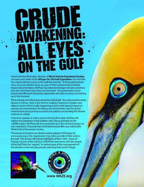 Crude Awakening: ALL EYES ON THE GULF