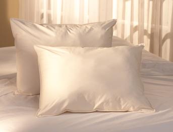 new pacific coast feather company down pillows unique linens. Black Bedroom Furniture Sets. Home Design Ideas