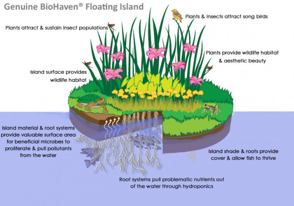 BioHaven Floating Island
