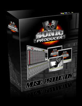 How Much Does Sonic Producer Cost