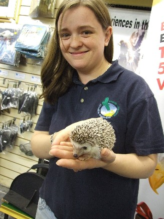 Cheshire Waterlife staff member Sam with an African Pygmy Hedghog