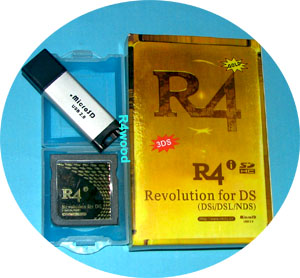 R4i Gold 3DS Flashcard with Wood Kernel for Nintendo 3DS