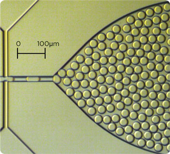 Dolomite_Small_Droplet_Chip_microdroplets