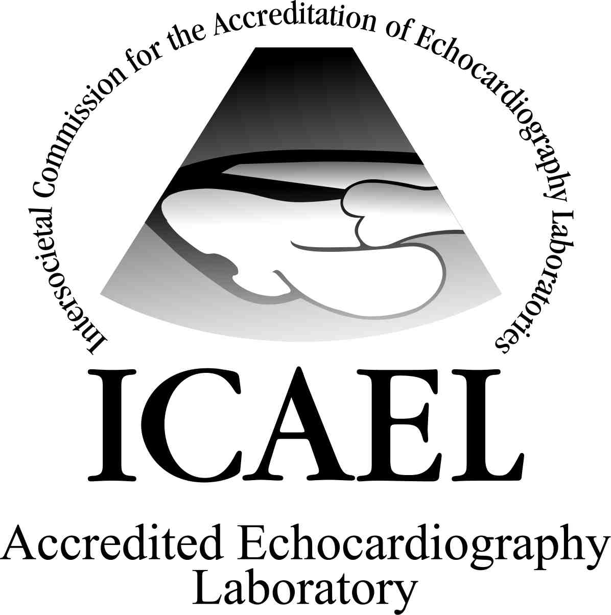 ICAEL Accredited Lab Seal