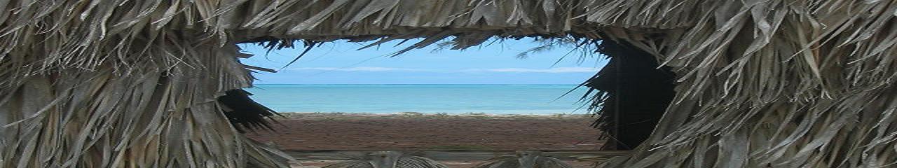 Tiki hut on Bambarra beach