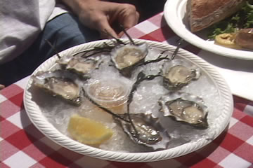 Oysters at the Oyster Bliss Celebration Berkeley
