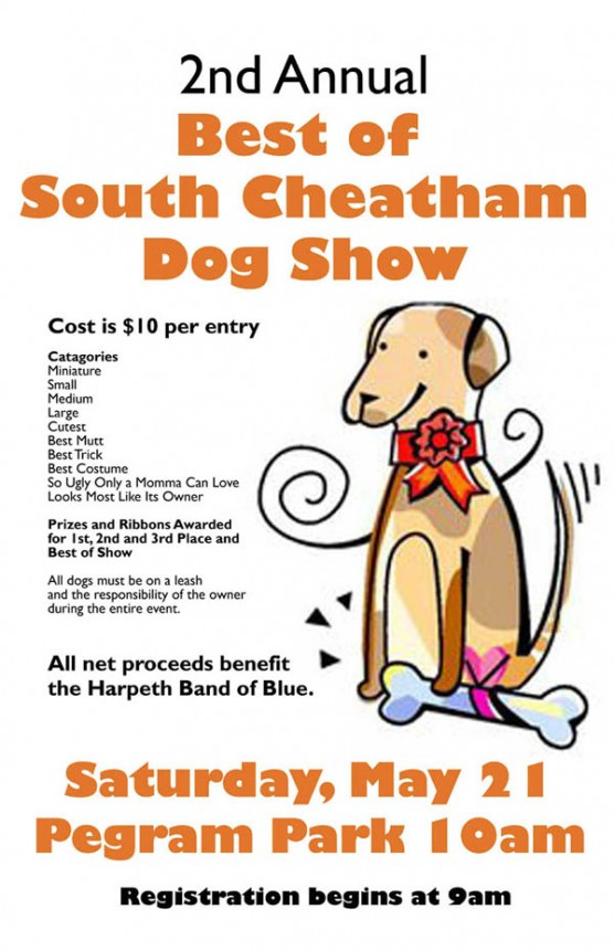 Best of South Chetham Dog Show
