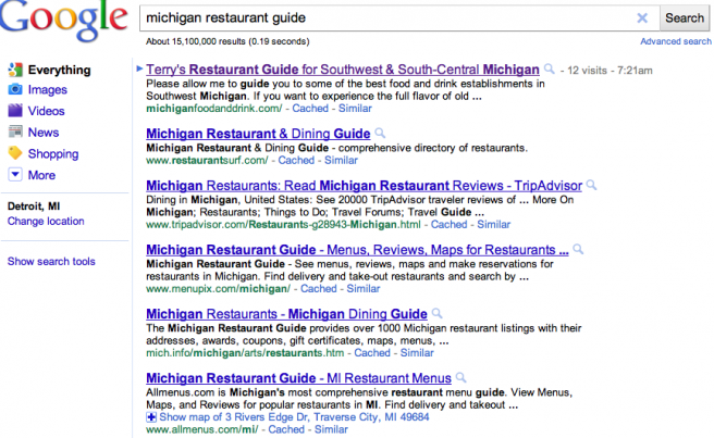 Terry's Guide Michigan SEO & SES