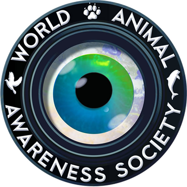 World Animal Awareness Society - www.WA2S.org