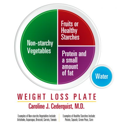 BistroMD Reveals Weight Loss Plate in Response to USDA's ...
