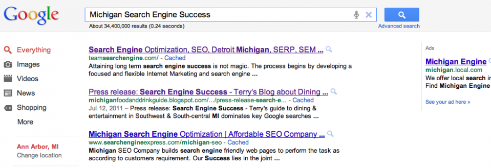Team Hypernet Michigan search engine success