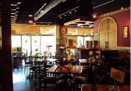 Cat Cafe Lancaster Pa