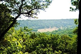 Dogwood Canyon Audubon at Cedar Hill