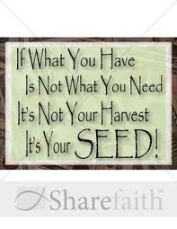 Its your Seed.