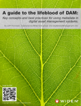 A guide to the lifeblood of DAM