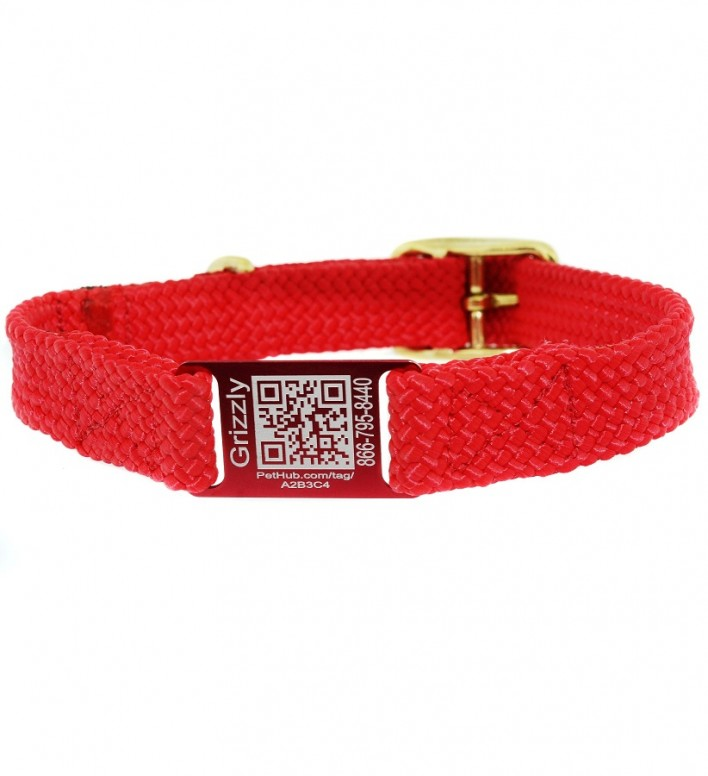 PetHub QR Code on dogIDs ScruffTag collar
