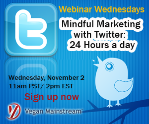 Webinar_Twitter-Marketing-banner-ad