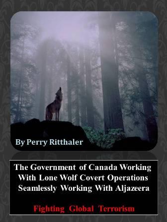 Covert Digital Guerilla Warfare Strategy Operation