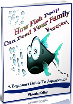 Fish Poop Can Feed You