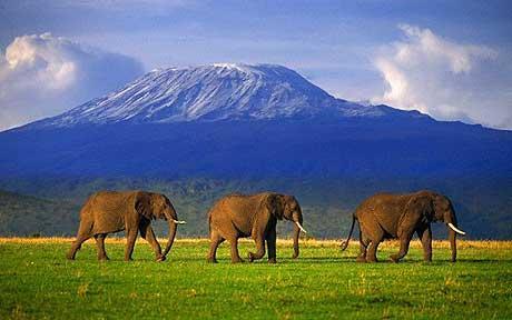 Mount Kilimanjaro, the ultimate charity challenge