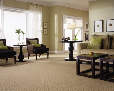 Cheap Carpet Prices Washington DC