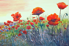 Gill Cox - Featured Artist