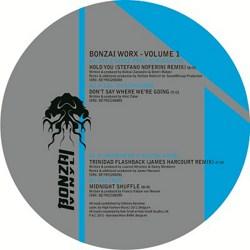Bonzai Worx Volume 1 on Vinyl!