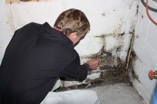Mold Inspection SM