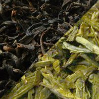 oxidation-green-black-tea