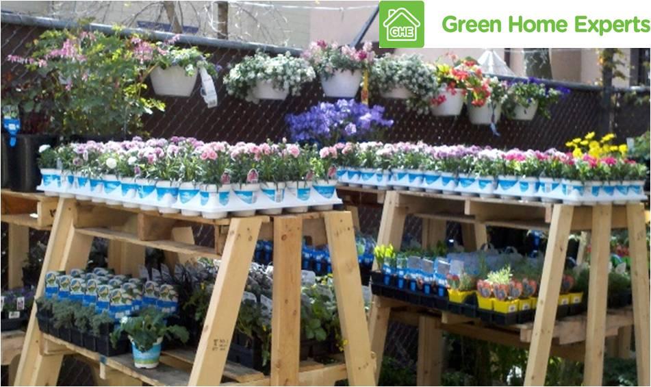 Blooms and edibles fill GHE Eco-Garden Center