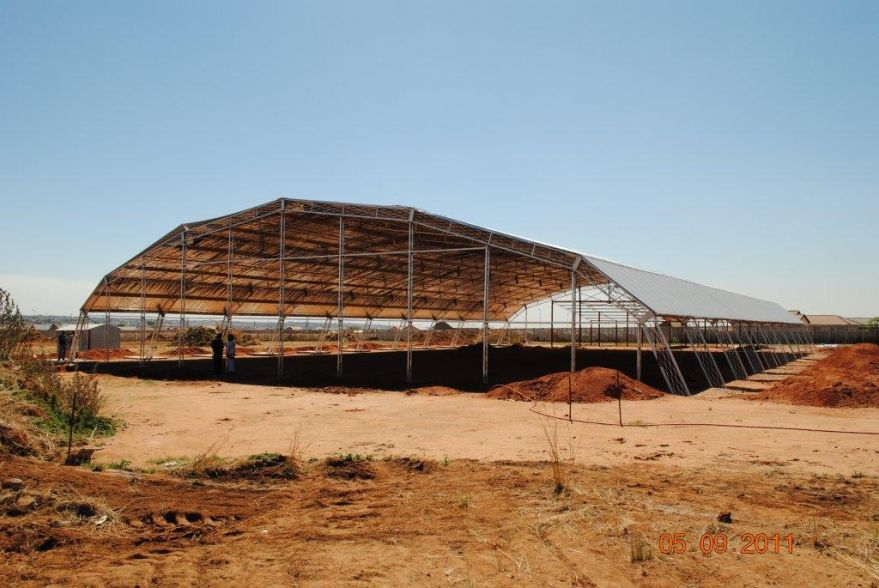 Amplifrom Roofing Structure