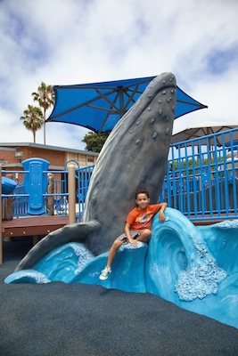 Los Angeles Custom Whale Climber - GameTime