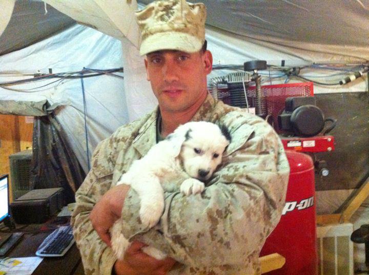 One of Robo's puppies