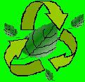 CBC_Green_Class